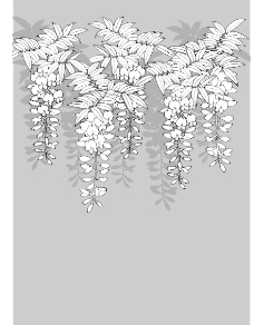日本线描植物和花卉图片