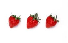 草莓3图片