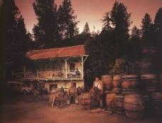 美酒庄园图片