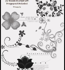 超级漂亮的花纹蒙板笔刷