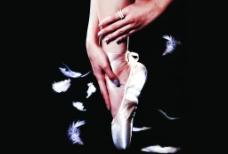 唯美巴蕾图片