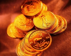 金币系列42图片