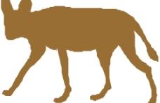 矢量动物图片