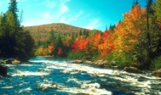 秋天景色10图片