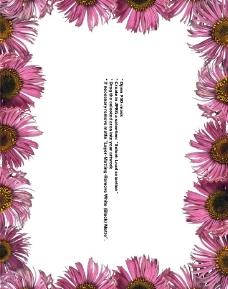 鮮花邊框圖片