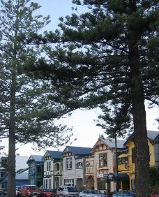 新西兰之旅-彩色小屋图片
