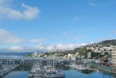 新西兰之旅-私人游艇码头图片
