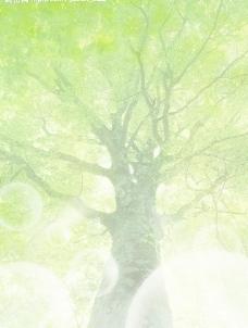 绿色水滴绿叶图片