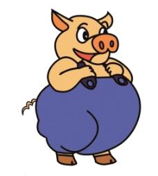 动物猪图片