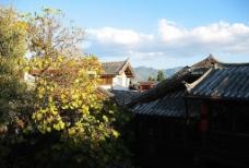 云南6图片