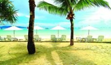 美丽的长滩岛图片