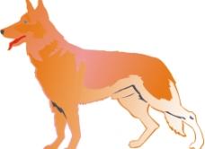 中国狗图片