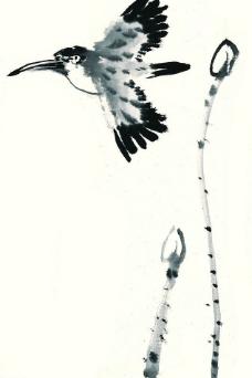 水彩飞鸟写意图片