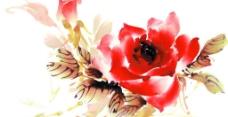 国画写意风格玫瑰花分层psd图片