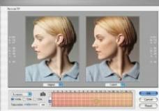 修整人物皮肤颜色的工具PhotoTune SkinTune v2.0图片