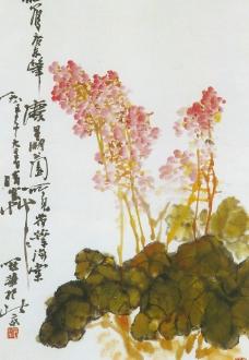 荷叶海棠图图片