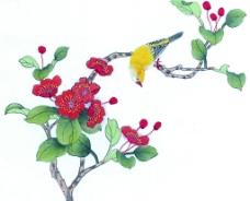 花鸟国画图片
