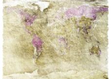 世界板块图片